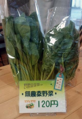 朝採り、無農薬有機栽培野菜はいかがですか