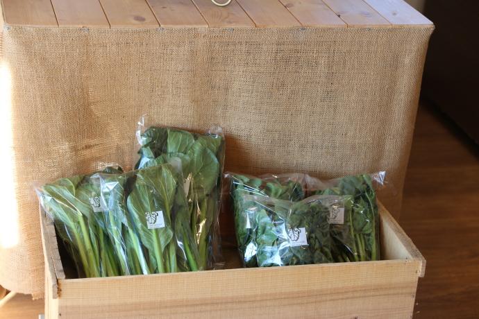 直売無農薬栽培野菜各種の販売画像です。